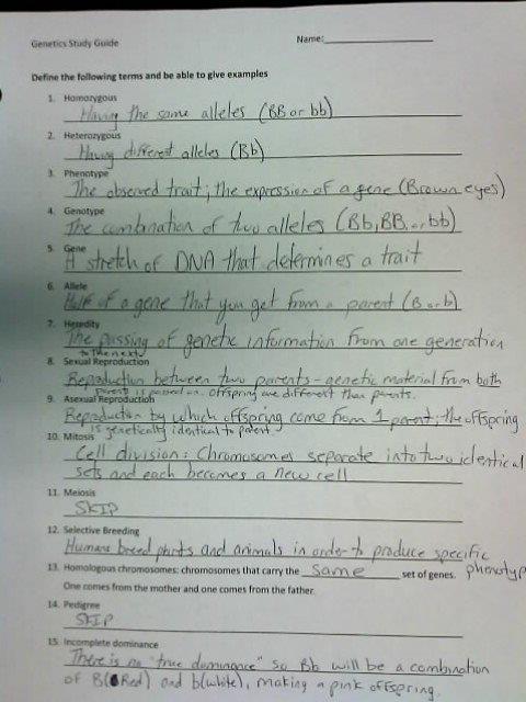MR. Kane's Science Class - Blog